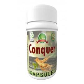 Conquer Capsule
